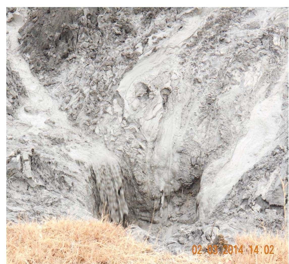 Teaching about the recent dan river coal ash spill